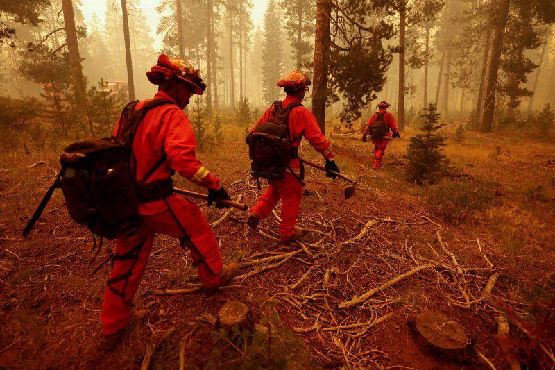 пожар в Калифорния нараства до близо 500 000 акра земя